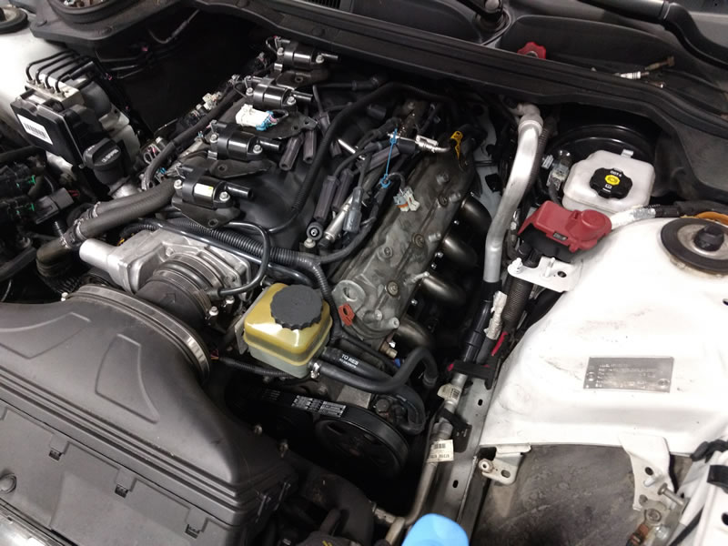 FuzzKill's LS3/6MT Caprice - New Caprice - Discussion forums